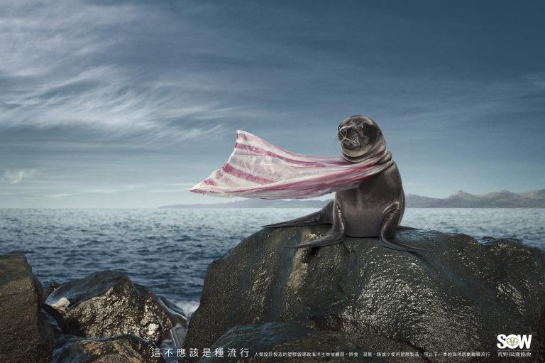 海狗篇-中文完稿-59.4x41.6-cs2ol